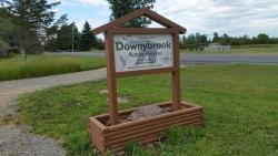 downybrook-trails-4
