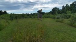 downybrook-trails-6