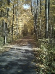 blackrivertrail2012-10-1713-38-09