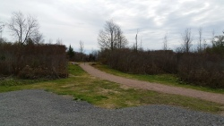Otter Creek Preserve and Nature Trail (2)