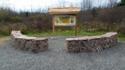 Otter Creek Preserve and Nature Trail (3)