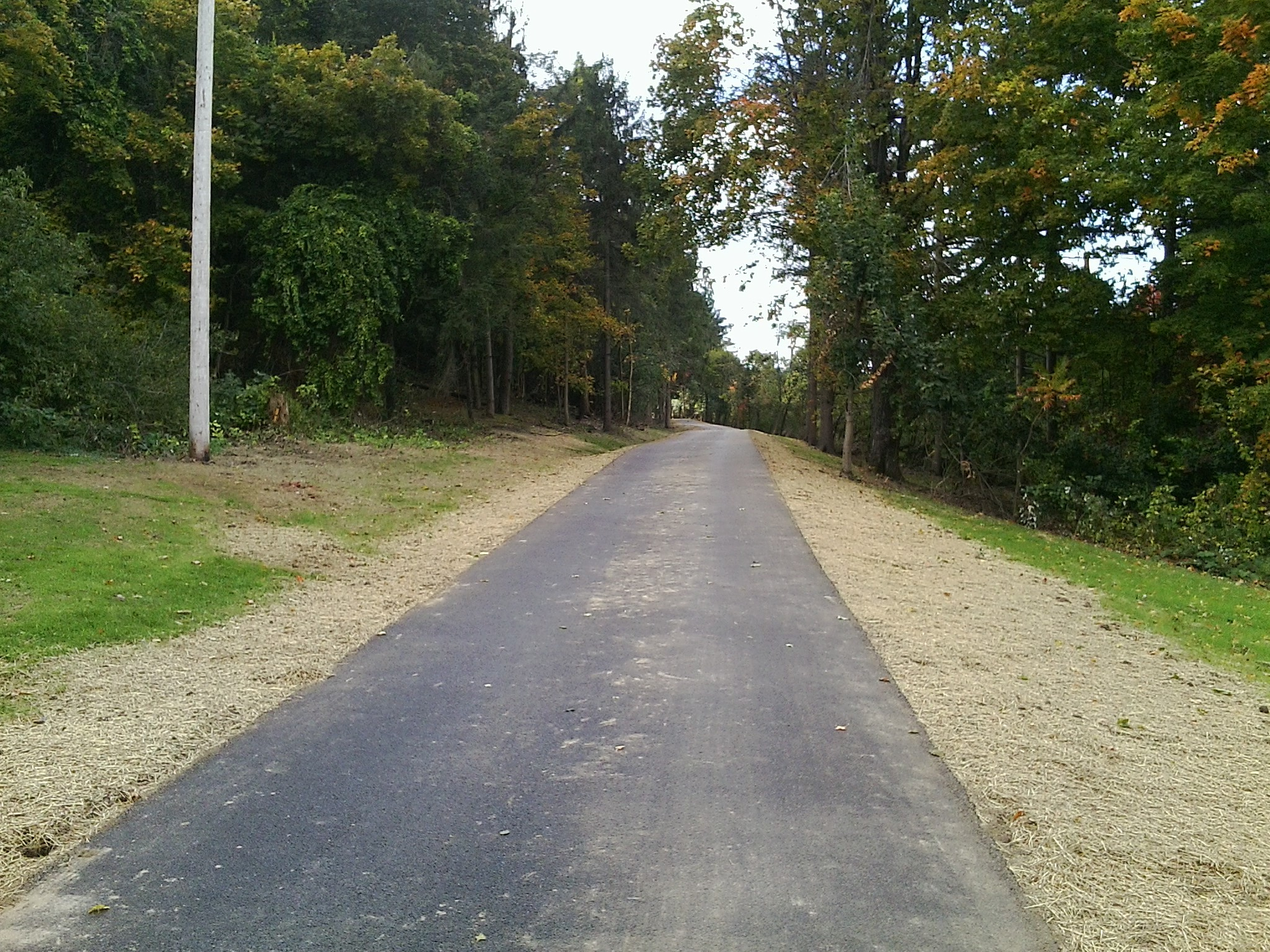 New trail section at Thompson Park, .4 of a mile