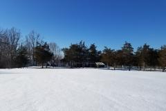 Winter shot of the rental properties