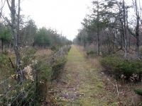 One of the trails.