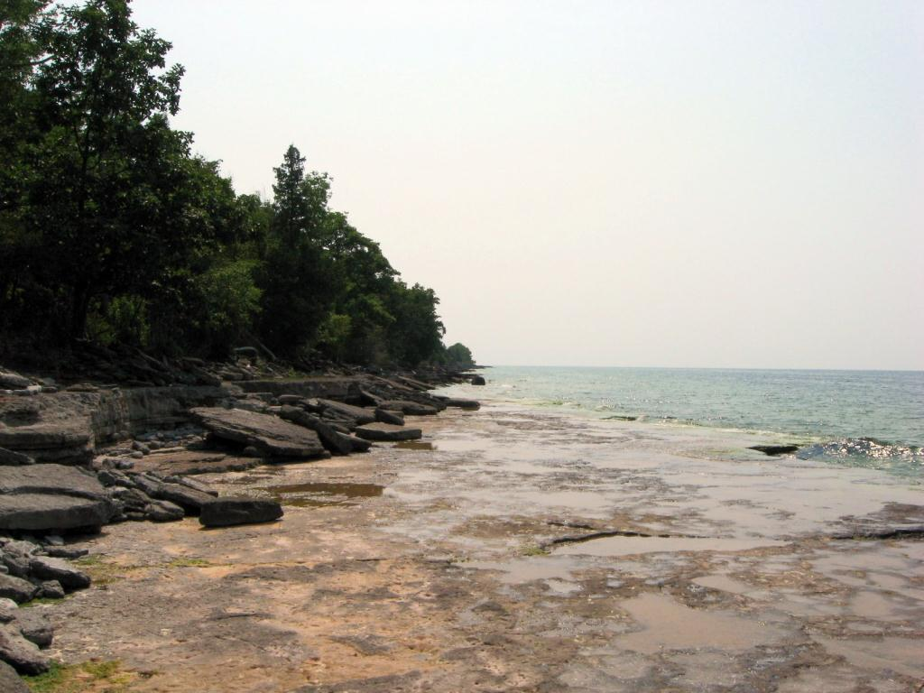 The shoreline.