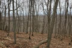 Heading down the steep hill trail