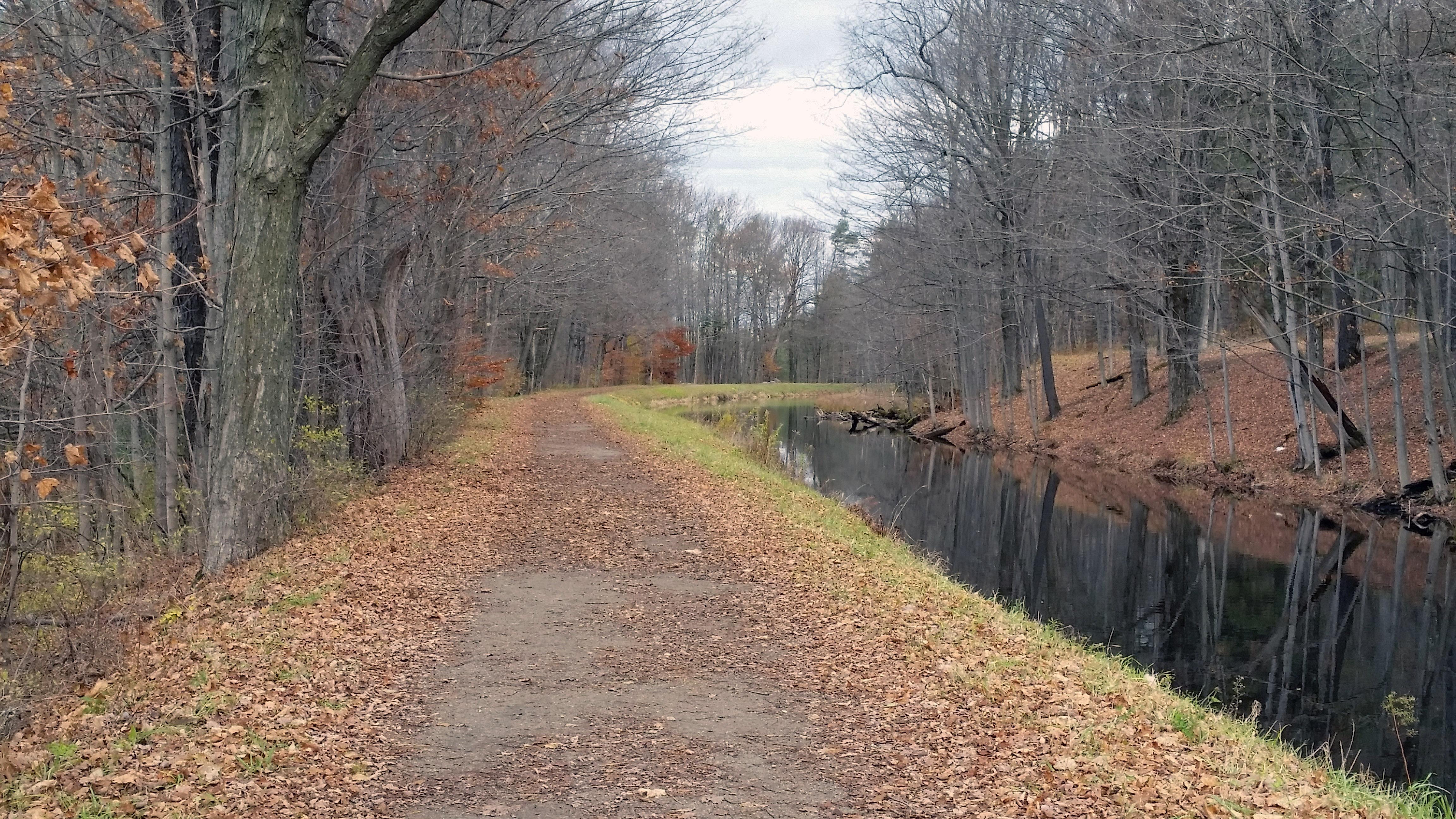 Black River (New York)