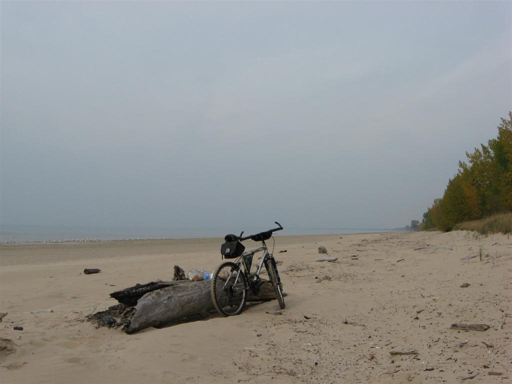 Southwick beach lakeview marsh wma